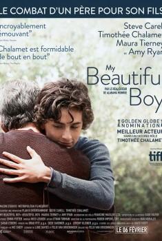 My beautiful boy (2019)